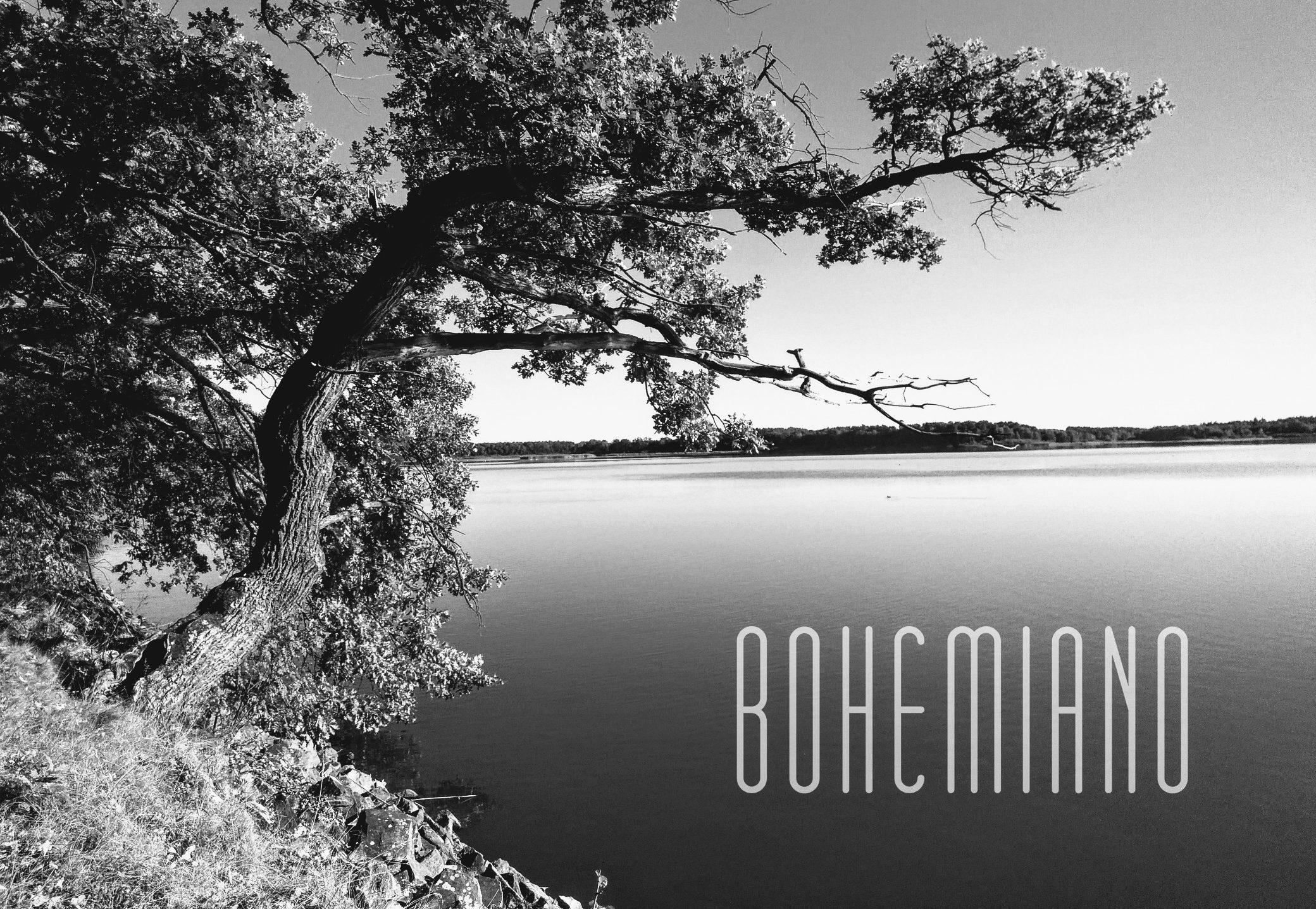 Bohemiano